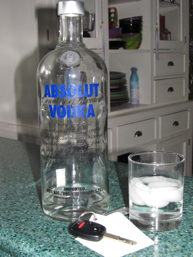 Alcohol photos 008
